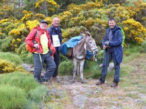 Gruppenfoto mit Esel 2