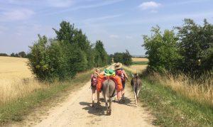 Eselwanderung Uckermark